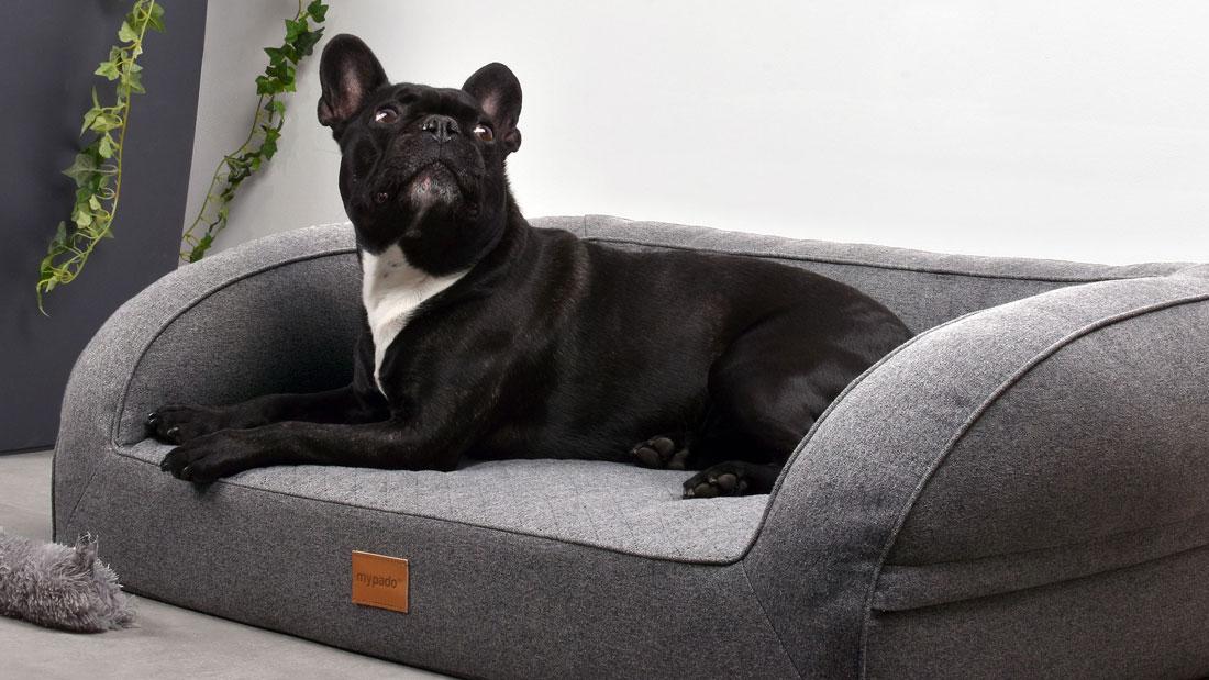 Hundebett Neo Trendy