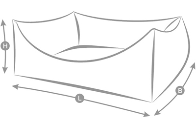 scala_section_dream