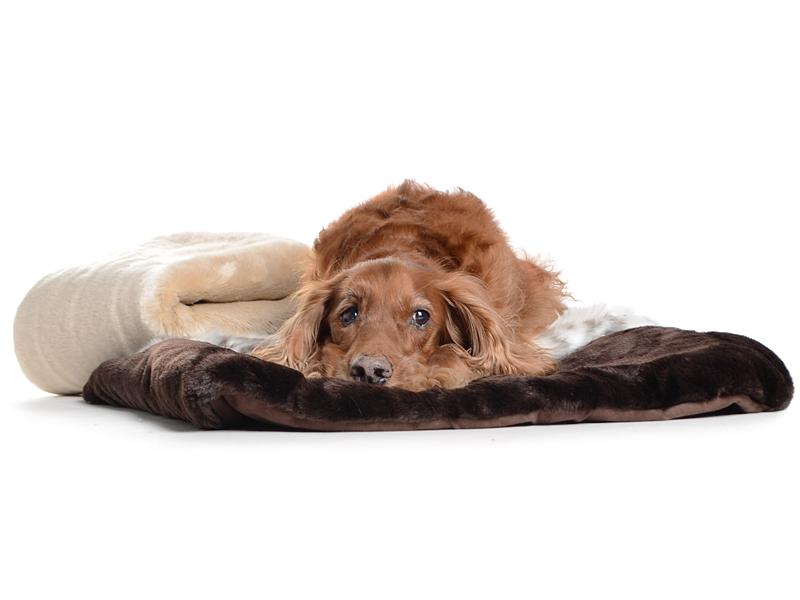 hundedecke aus pelz hnlichem material fake fur. Black Bedroom Furniture Sets. Home Design Ideas
