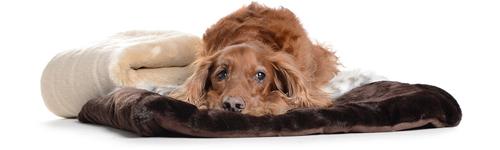 hundedecke pelz kuschelig fake fur